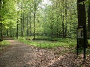 Tiergarten Colditz, Foto: A. Steinert