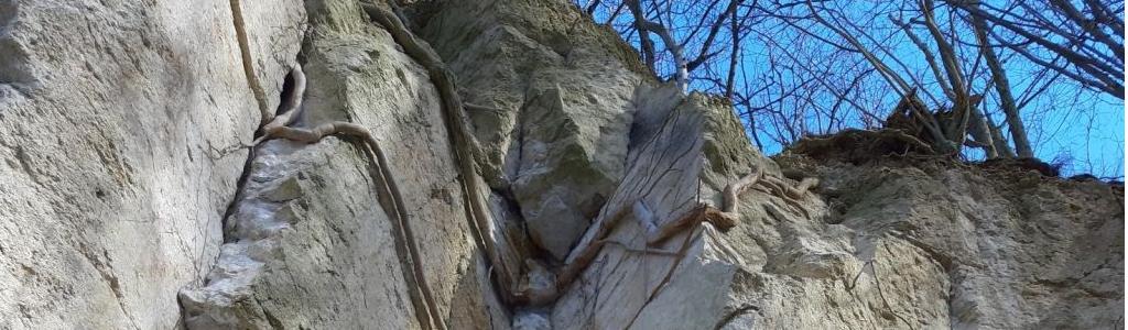 Porphyrfelsen im Mühlsteinbruch