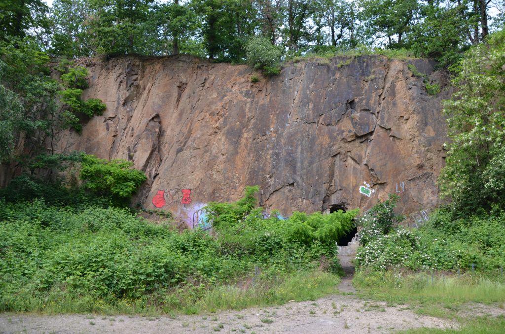 Schwemmteichbruch bei Grimma (c) Geopark Porphyrland